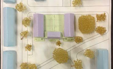 Project Buntplein krijgt vorm